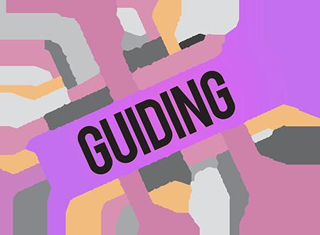 consumer-guide